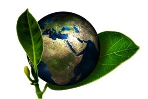 renacimiento de la tierra